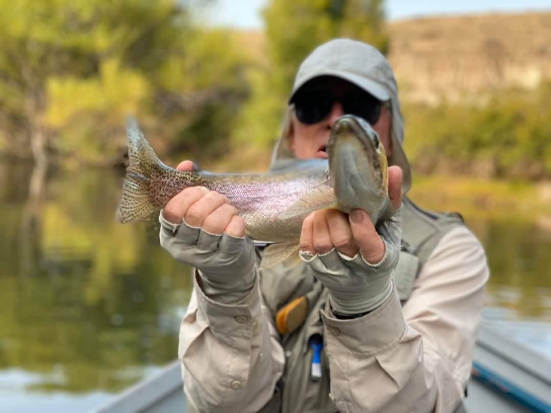 Ya se encuentran a la venta los permisos de pesca