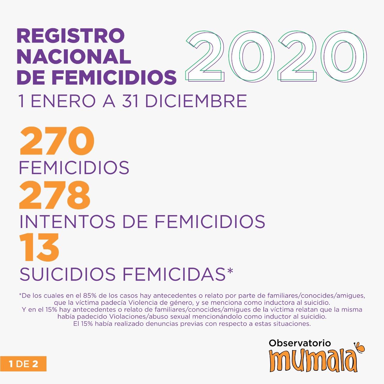 Balance: En 2020 hubo 1 Femicidio cada 32 horas en nuestro país